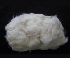 Ovine wool