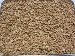 Fodder dry for dogs