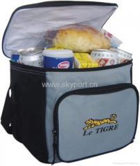 Bag-refrigerators