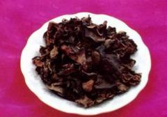Black tree fungus
