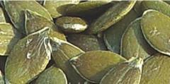 Seeds of pumpkin