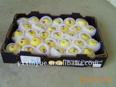 Nashi Pear   Crown Pear  Huangguan Pear 2011 crop