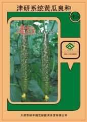 黄瓜种子 - 越冬温室