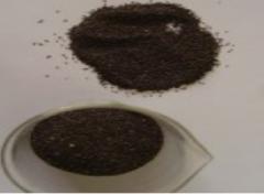 Plantago seeds
