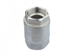 Vertical Type Check Valve