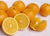 Mandarins (65-70)