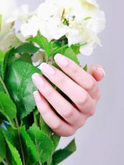 Nail gel for French manicure