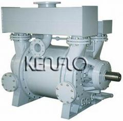 Vacuum pumps, pumps for air and gas