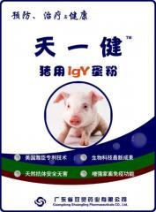 天一健猪用IgY蛋粉