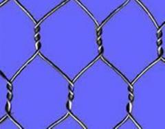 Hexagonal mesh