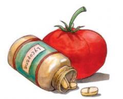 China Tomato Extract  Lycopene