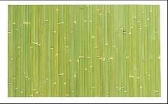 Wallpaper bamboo