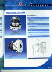 Vacuum cleaner motor,