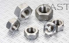 Stainless nut
