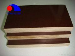 Plywood beams