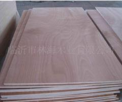 Plywood of beech
