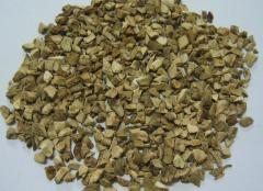 Dahurian angelica root