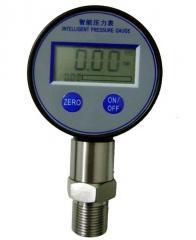 ZPG801电池供电数显表