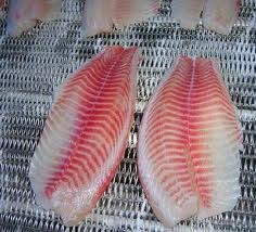 Frozen Tilapia Fillet by Beautiful Packing