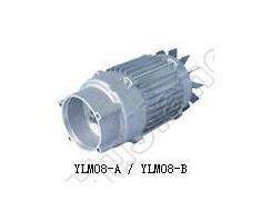 High Pressure Washing Machine Motor