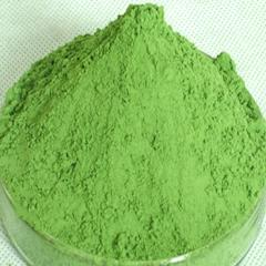 Organic barley grass powder(barley young leaf