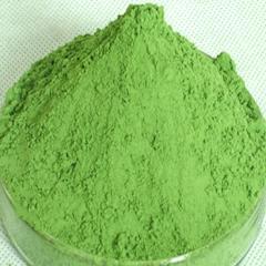 Organic barley grass powder(barley young leaf