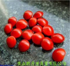 打孔南国红豆