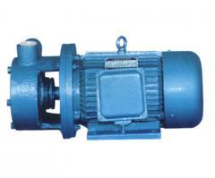 Vortical pumps
