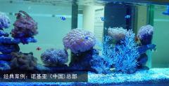 北京雅瑞海洋科技服务中心