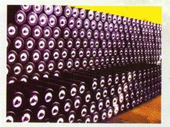 Conveyer rollers