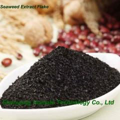 Seaweed Extract Flakes Fertilizer