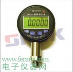 SPMK2001数字精密压力表