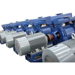 Rotary vane pumps