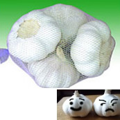 Pure / Normal White Fresh Garlic