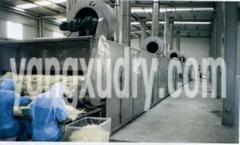 DWC系列脱水蔬菜带式干燥机