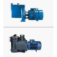 NMP/MPC泳池循环泵