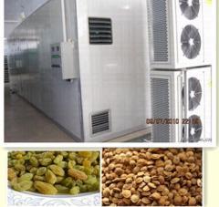 High temperaure fruit dryer