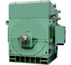 YKS高压鼠笼三相异步电动机 机座号:355-1000