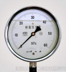 LS-YTN系列耐震压力表