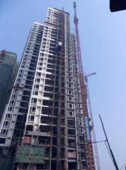 Latest 16t Self Erecting Tower Crane Qtz315 TC7040