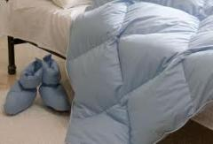 Duck Down Duvet (HY-BE1 blue)