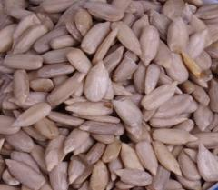 2012 Raw Oil Sunflower Seeds Kernel Bakery Grade