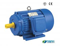 Y Series Induction Electric Motor