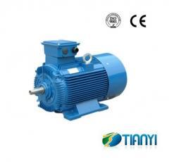 Y2 Cast Iron Three Phase Motor