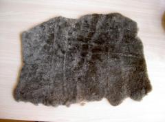 Wool on lining