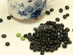 Black soyabean with green Kernel