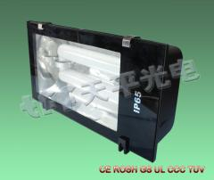 Induction Tunnel Light