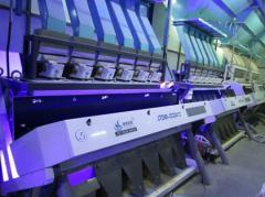 China JIETAI black tea ccd color sorting machines