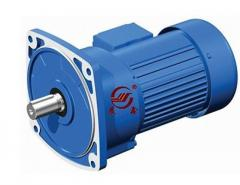 G3FM series three phase motor reducer with flange