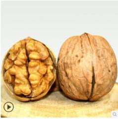 Орех и ядро ореха.